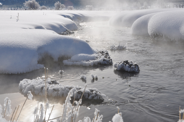 victor_winter_10