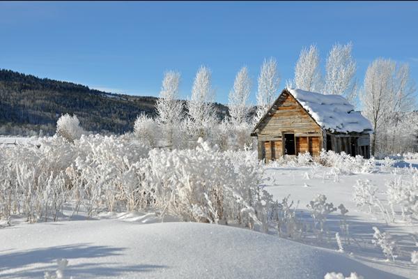 victor_winter_4