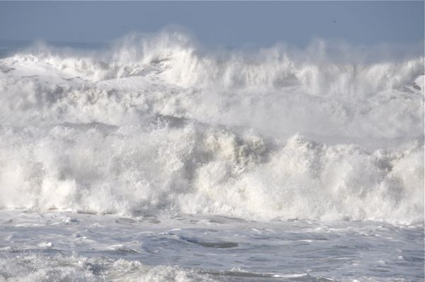 Surf_021310