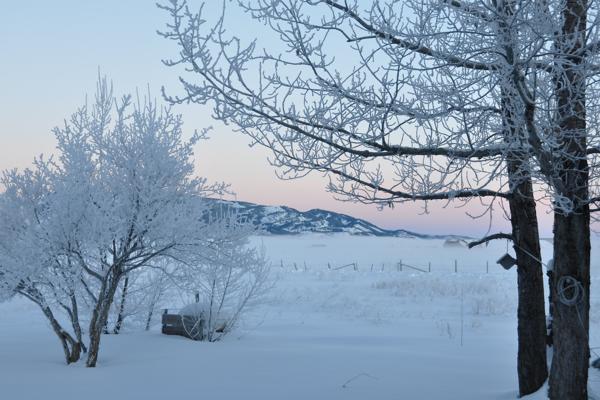 winter-encore82