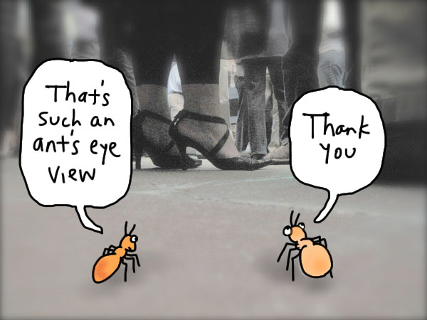 ants_cartoon4