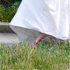 Post image for Cinderella's Wedding Train