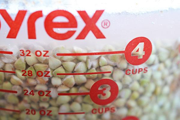Pyrex with buckwheat