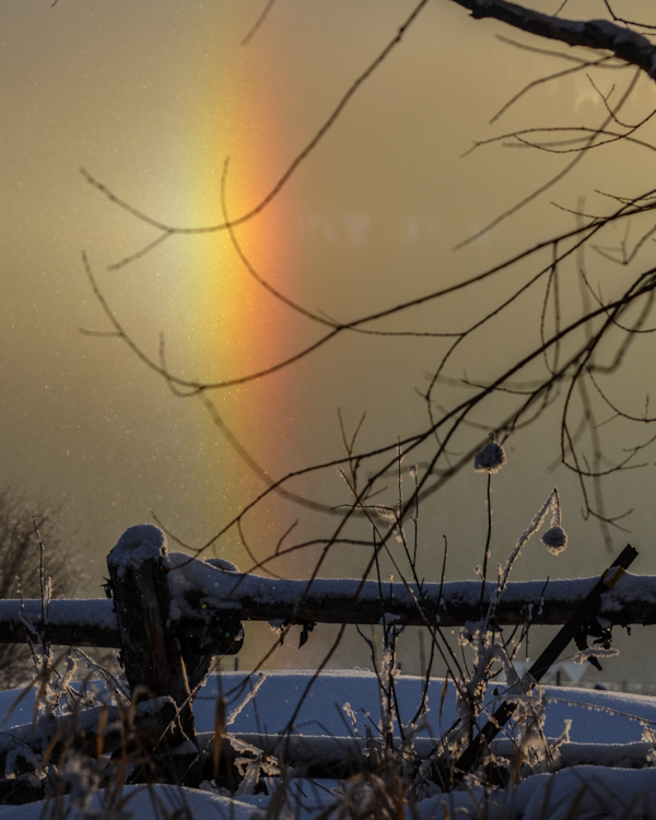 New Year Frostbow-4