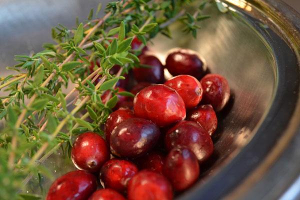 Cranberry Thyme Shrub | rickandkathy.com
