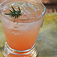 Post image for How To Make Shrub Drinks