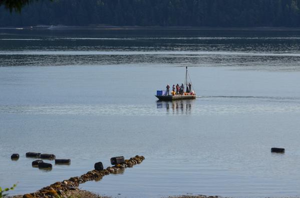 Fanny Bay Oysters-49