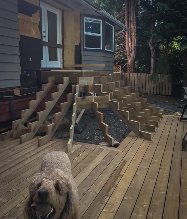 New Deck Photobomber-3
